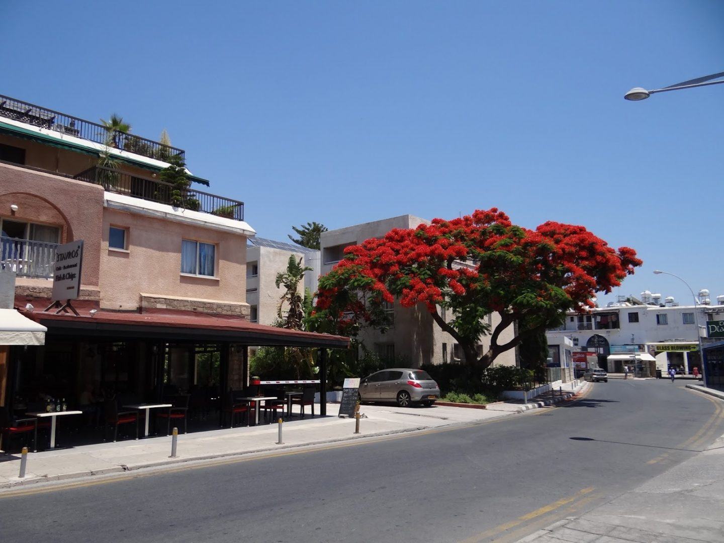 A Day In Cyprus | Tips and Facts | Part VI