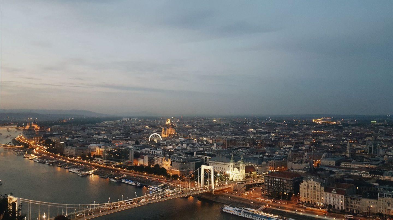 Budapest from Gellert's hill